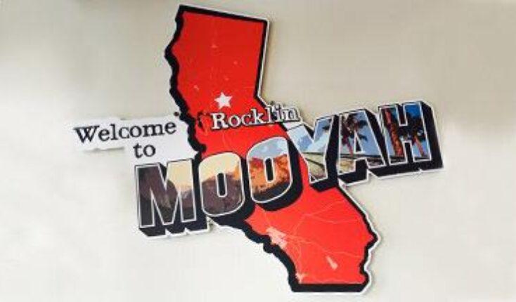 Rocklin California MOOYAH Burgers Fries and Shakes - restaurant interior image